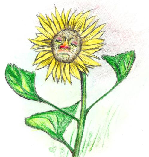 Zeichnung von Blume mit Schnupfen © Isabella Czedik-Eysenberg